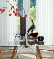 Vertical Blinds are versatile window coverings