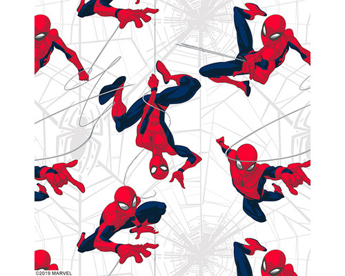 SWIFTPRO Roller Blinds SPIDER-MAN RB