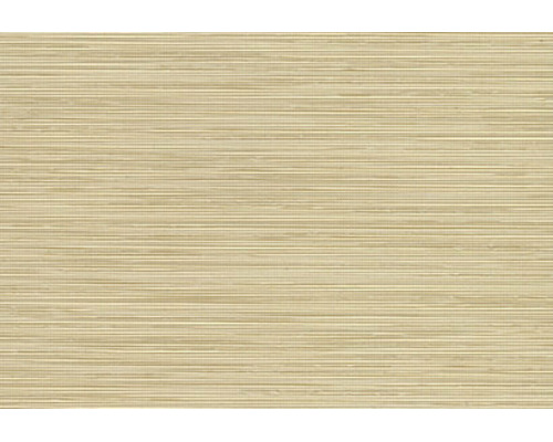 Pleated Blinds - Standard STRATA SPC PLT 20 CALICO