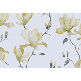 Standard Roller Blinds MAGNOLIA RB PIPIN